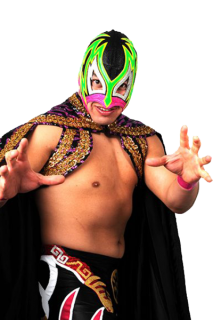 Guerrero Maya Jr.